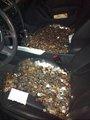 Jared coins prank revenge