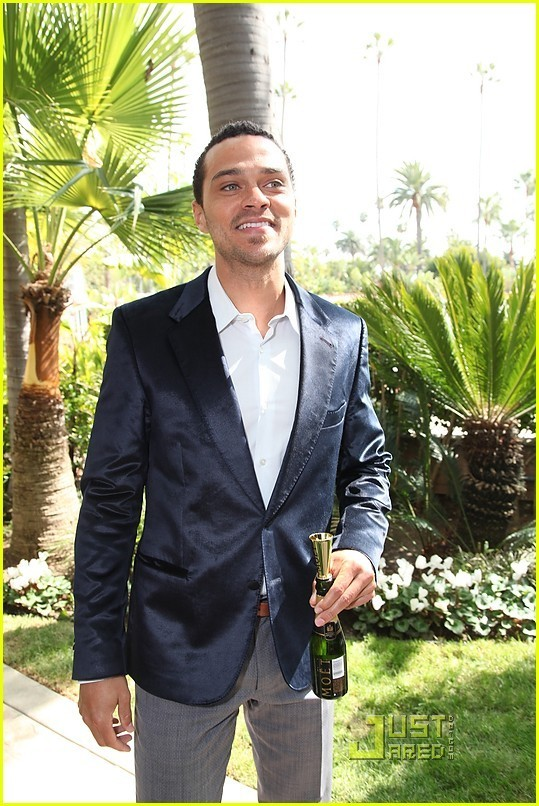 jesse williams sisterhood of traveling. Jesse Williams: Essence