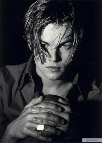 Leonardo DiCaprio wallpaper titled Leonardo Dicaprio