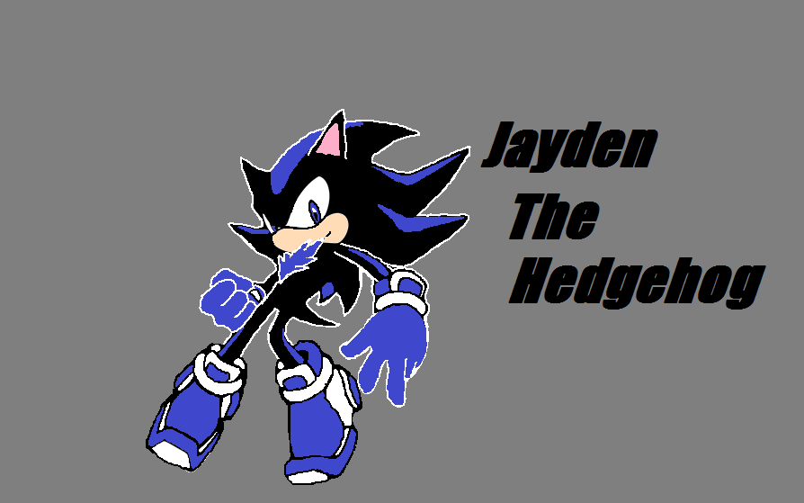 Sonic Charcter Jayden The Hedgehog