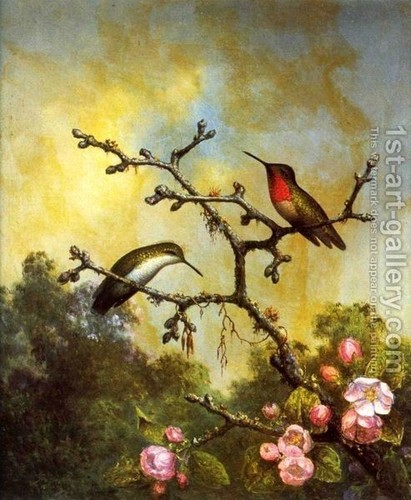 Ruby Throated Hummingbirds (in oils) द्वारा M J Heade