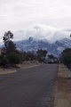 Snow on the Catalinas Feb 2011 - arizona photo