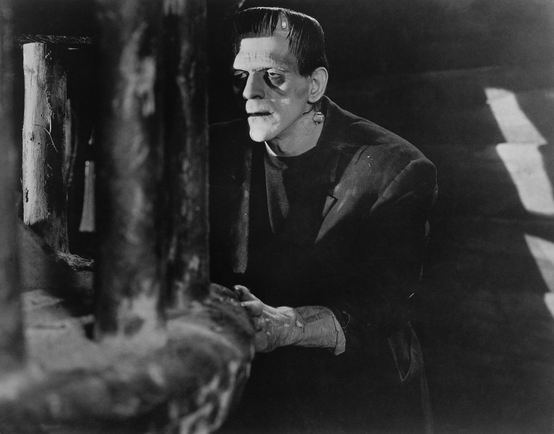imagery in frankenstein This set of notes discusses symbolism and imagery as well as as structure and form in frankenstein, briefly: light: symbolic of knowledge and its dangers walton.