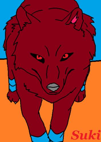 Suki's lobo 3