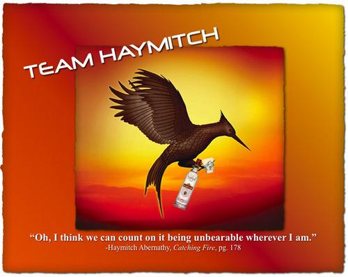 Team Haymitch!