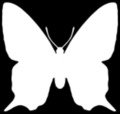 inverted mariposa silhouette