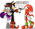 shadow want to kill knux because he love rouge XD - shadow-and-rouge photo