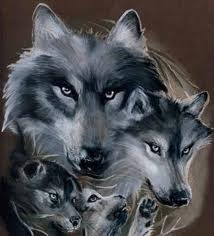 the Anubian's wolf pack wallpaper titled wolf family