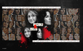 Amazing! - rizzoli-and-isles wallpaper