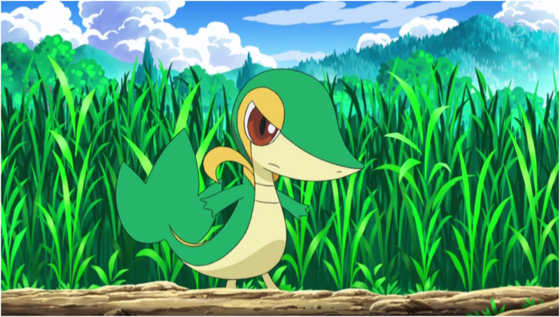 snivy images ashs snivy wallpaper and background photos