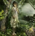 Beautiful Fairies - peterslover photo