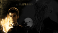 david-tennant - David wallpaper