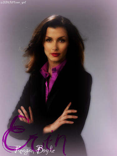 Blue Bloods (CBS) wallpaper possibly containing a well dressed person and a portrait entitled Erin Reagan-Boyle
