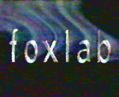 fox, mbweha Lab (1989)