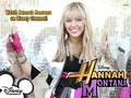 Hannah Montana - superstars wallpaper