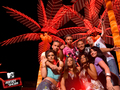 Jersey Shore Season 1 Cast Wallpaper  - jersey-shore wallpaper