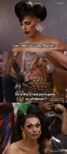 Manila's porcupine?