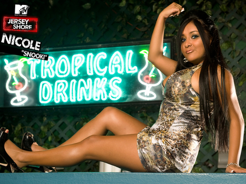 Nicole Snooki Polizzi Jersey Shore Wallpaper - jersey-shore Wallpaper