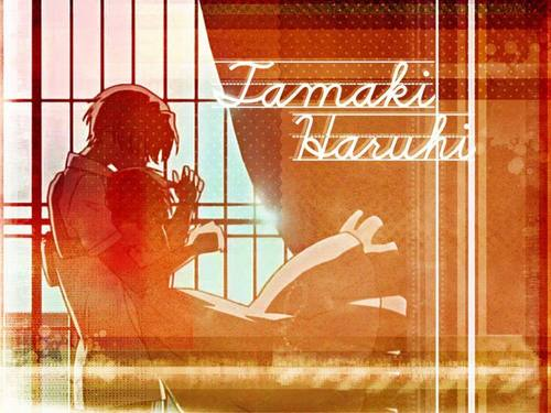 Tamaki & Haruhi fond d'écran