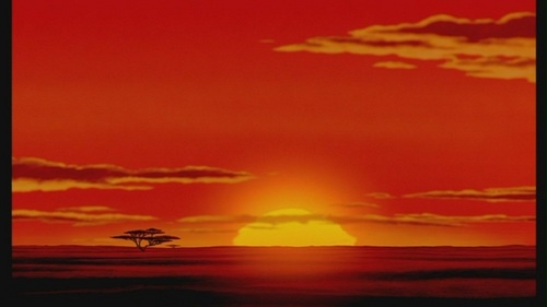 disney images the lion king hd wallpaper and background