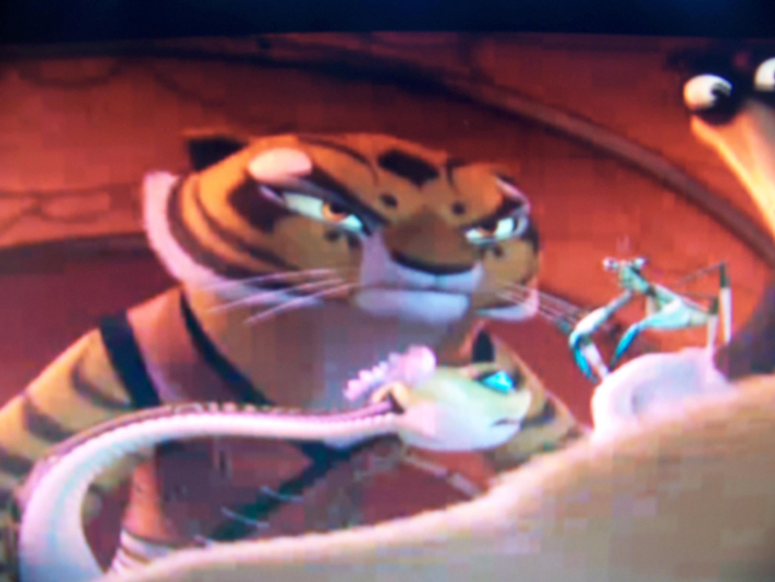 Image 7 Of 45 Kung Fu Panda Master Tigress Part Of Kung Fu