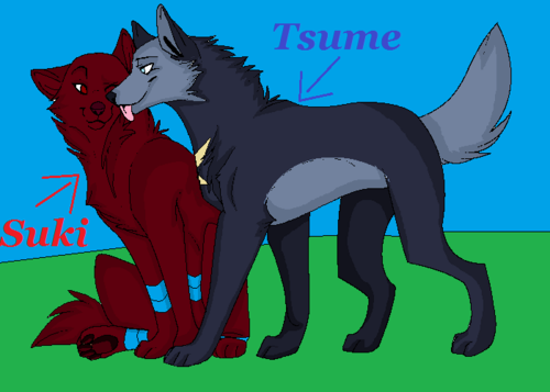 TsumeXSuki :D