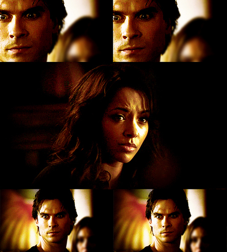 Damon & Bonnie wallpaper possibly with a portrait titled bd