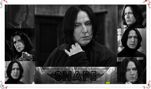 lots of snape