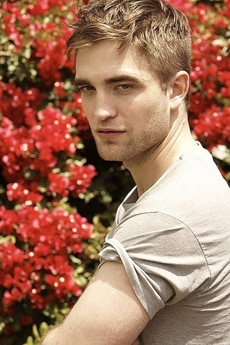 rob with red 花