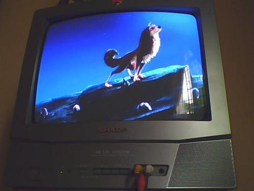 A&O Fotos taken from my tiny TV