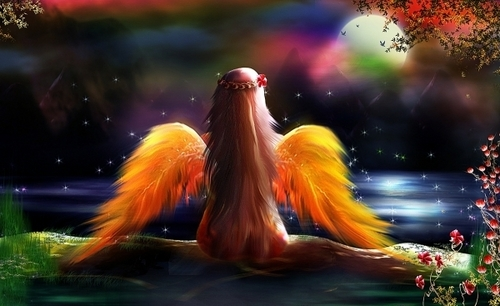 Angel Of Colours