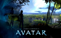 AvAtAr - avatar wallpaper