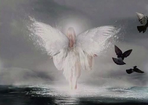 Beautiful Light Angel –Jäger der Finsternis for a beautiful friend