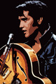 Elvis In Art - elvis-presley photo