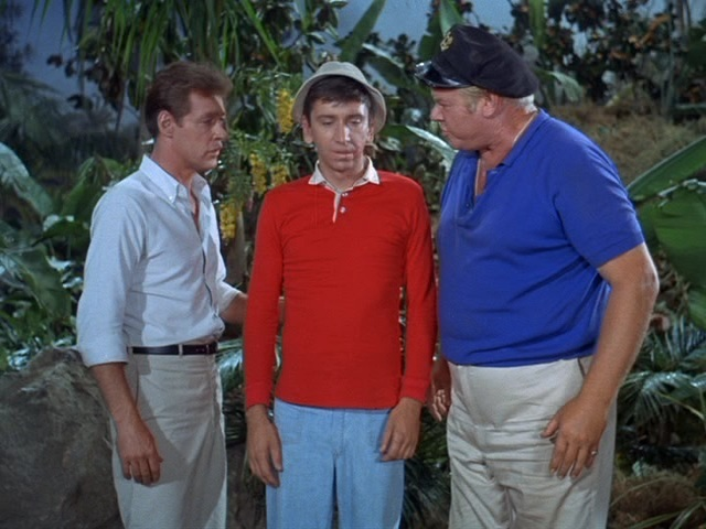 Gilligan S Island Mrs Howell S Name As Character
