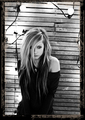 Goodbye Lullaby Photoshoot (HD - OFFICIAL)