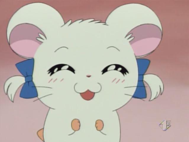 Anime: Hamtaro