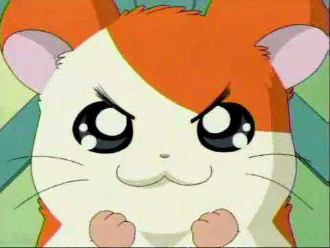 Hamtaro Hintergrund possibly containing Anime called Hamtaro