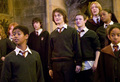 Harry Potter - hogwarts-house-rivalry photo