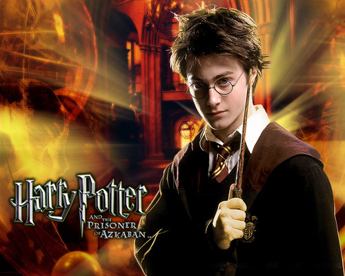 Hogwarts House Rivalry! wallpaper containing a concert called Harry Potter