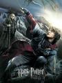Harry Potter - hogwarts-house-rivalry photo