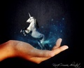 It's Magic - unicorns photo
