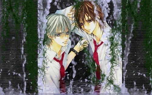 funkyrach01 images Kaname Kuran & Zero Kiryu HD wallpaper and background photos