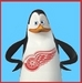 Kowalski the Red Wings Fan