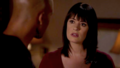 M&P lovely scenes - morgan-and-prentiss photo