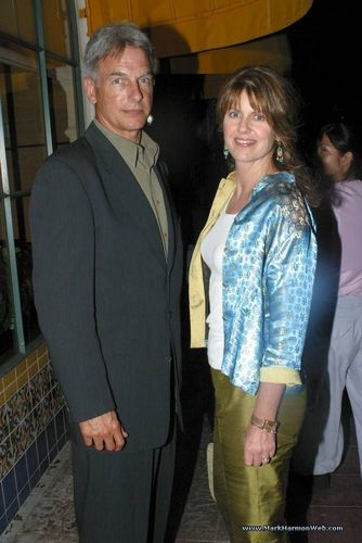 Why Did Mark Harmon and Pam Dawber Divorce