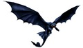 Night Fury - how-to-train-your-dragon photo