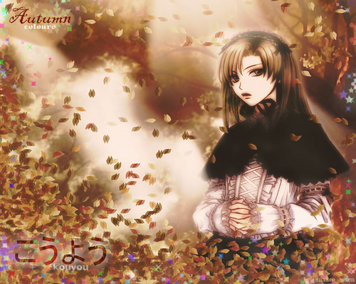 Toru From Princess Princess  - funkyrach01 Wallpaper