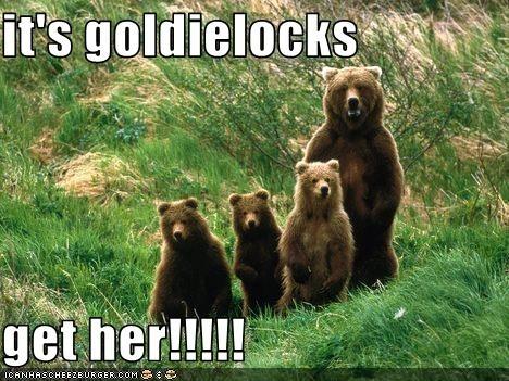 oso, oso de funny