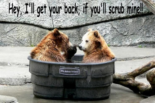 menanggung, bear funny